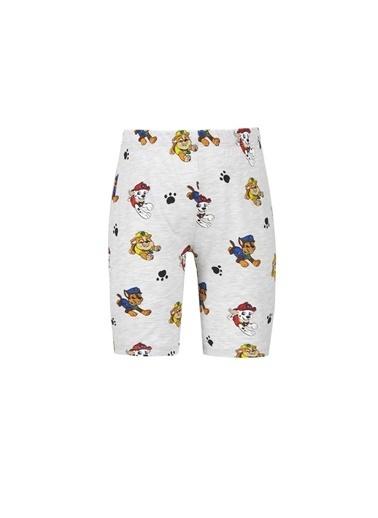 DeFacto Erkek Çocuk PAW Patrol Lisanslı Kısa Kol Pijama Takımı Gri